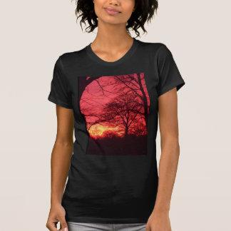 Árboles en la camisa de la puesta del sol