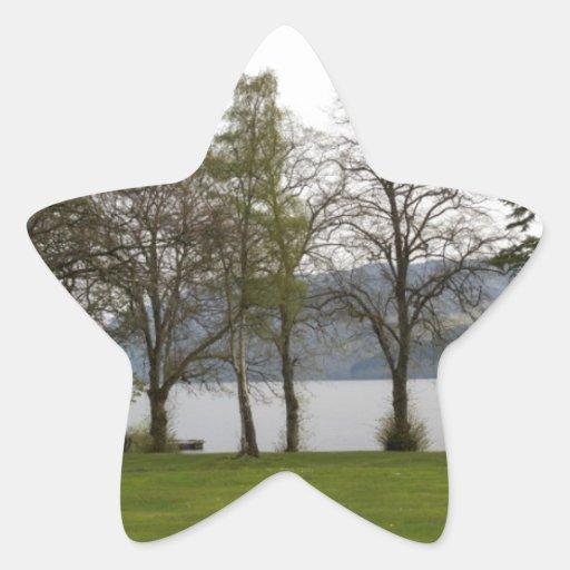 Árboles en la orilla de Loch Ness Calcomanía Forma De Estrella Personalizadas