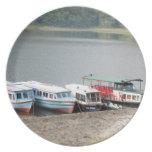 Árboles en la orilla del lago plato de comida