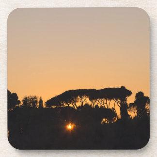 Árboles en la puesta del sol en contraluz en Roma Posavasos De Bebidas
