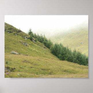 Árboles en lado de la colina póster