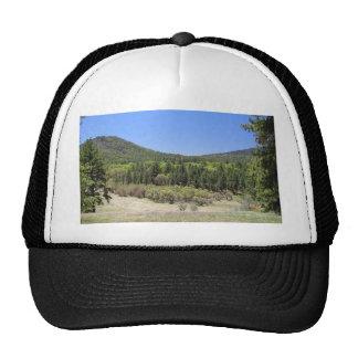 Árboles en las colinas con imagen del paisaje del gorro