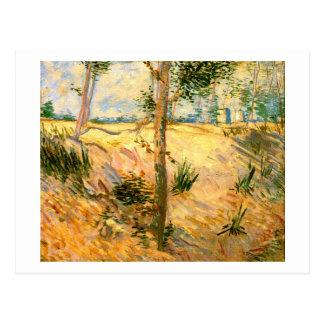 Árboles en un campo en un día soleado, Vincent van Postal