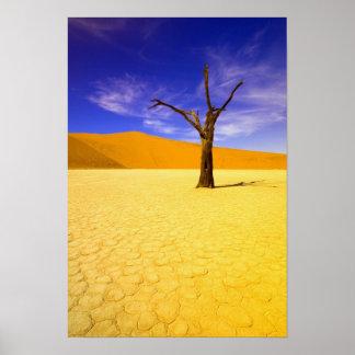 Árboles esqueléticos en Vlei muerto Sossusvlei, Posters