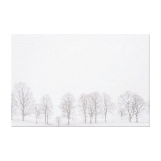 Árboles estériles en invierno en lona blanca como impresión en lona estirada