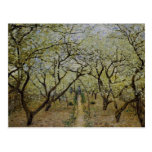 Árboles florecientes postal
