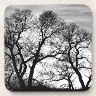 Árboles forestales del baile en blanco y negro posavasos