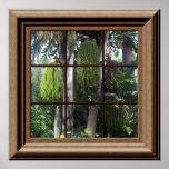Árboles forestales tropicales de la falsa opinión