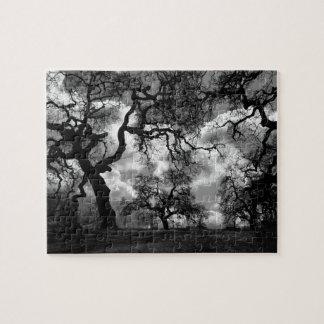 Árboles frecuentados blancos y negros rompecabeza con fotos