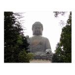 árboles grandes de Buda Postal