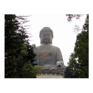 árboles grandes de Buda Postales
