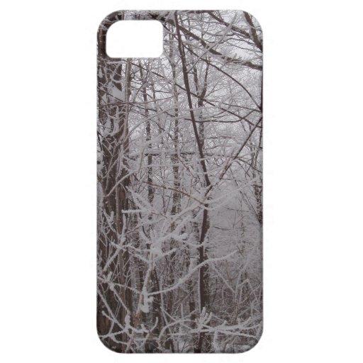Árboles helados nieve de Nueva Inglaterra iPhone 5 Case-Mate Cobertura