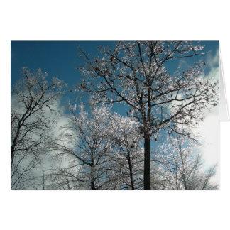 Árboles helados tarjeta de felicitación