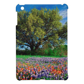 Árboles Live Oak entre los Bluebonnets de Tejas