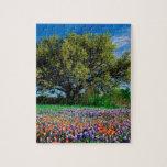 Árboles Live Oak entre los Bluebonnets de Tejas Puzzles