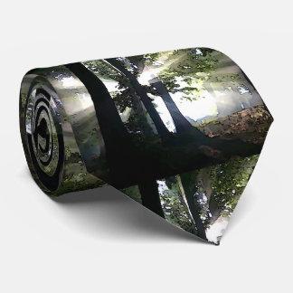 Árboles - luz del sol a través del bosque corbatas personalizadas