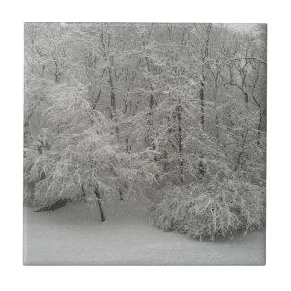 Árboles Nevado Azulejo Cuadrado Pequeño
