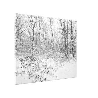 Árboles Nevado en el Poconos Impresiones En Lona Estiradas