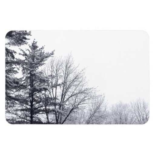 Árboles nevados: Horizontal Imanes