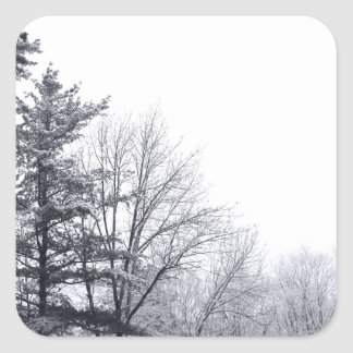 Árboles nevados: Horizontal Calcomania Cuadradas Personalizadas