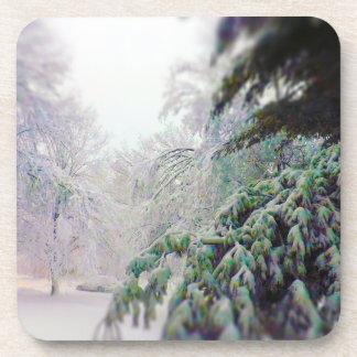 Árboles nevados, pino en la calle del kc posavasos de bebida