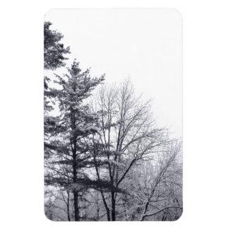 Árboles nevados: Vertical Iman