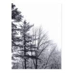 Árboles nevados: Vertical Tarjeta Postal