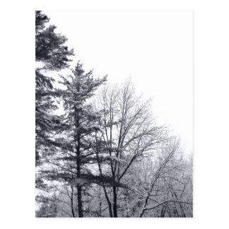 Árboles nevados Vertical Tarjeta Postal