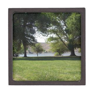 Árboles por el lago con el césped caja de regalo de calidad