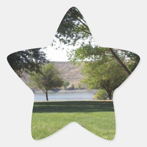 Árboles por el lago con el césped pegatina forma de estrella personalizada