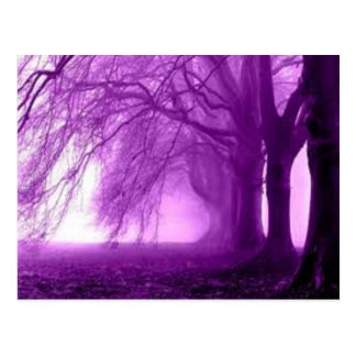 árboles púrpuras postales