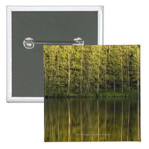 Árboles reflejados en el agua pin cuadrada 5 cm