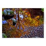 Árboles reflejados - tarjeta