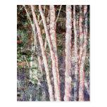 Árboles Rojo-Afilados Postales