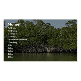 Árboles rojos del mangle en el borde del agua tarjetas de visita