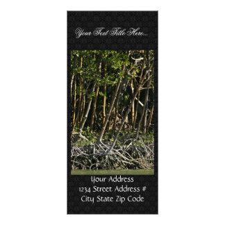 Árboles rojos del mangle lonas personalizadas