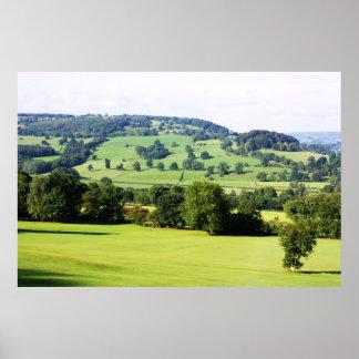 Árboles verdes en las colinas póster