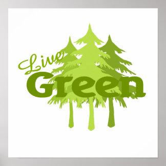 árboles verdes vivos póster