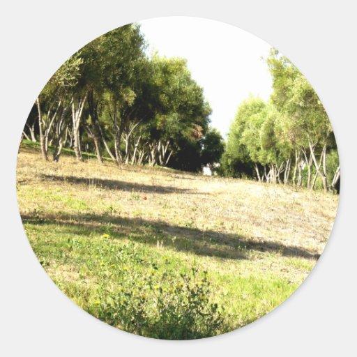 Árboles vivos pegatinas redondas