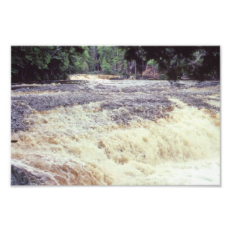 Árboles y agua de los Rapids de Indiana el río Fotografías