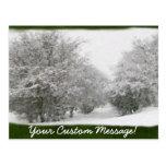 Árboles y arbustos del invierno Nevado Tarjeta Postal