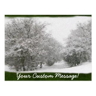 Árboles y arbustos del invierno Nevado Postales