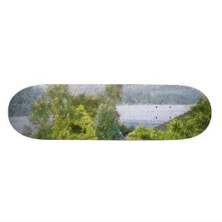 Árboles y casas que pasan por alto un lago patines