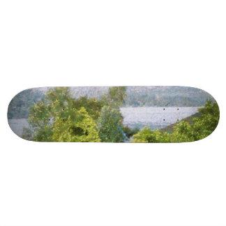 Árboles y casas que pasan por alto un lago skateboard