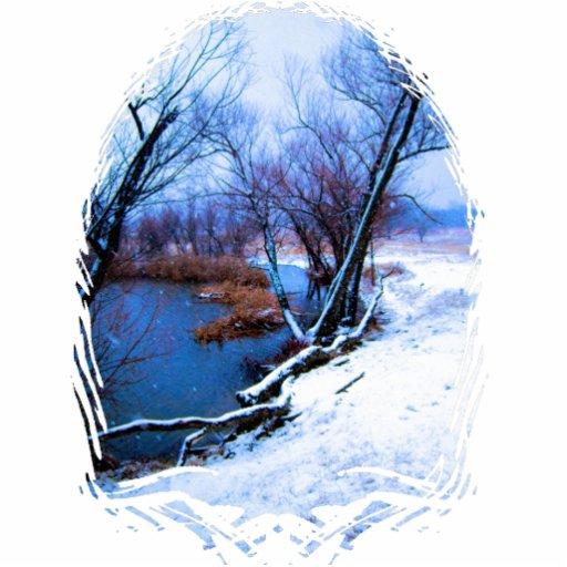 Árboles y charca del invierno llavero fotográfico