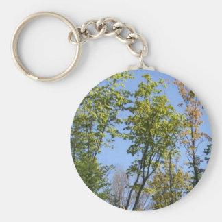 Árboles y cielo azul llavero redondo tipo pin