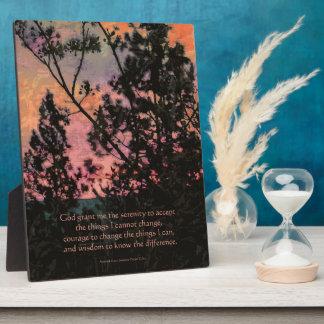 Árboles y cielo del rezo de la serenidad placas con fotos