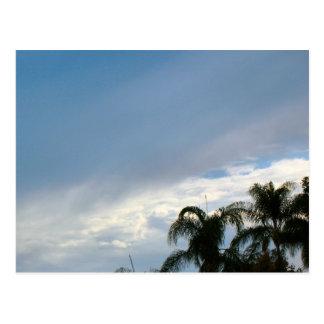 árboles y cielo tarjetas postales