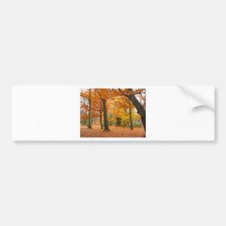 Árboles y hojas amarillos y rojos del otoño etiqueta de parachoque
