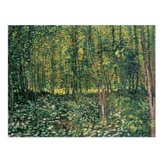 Árboles y maleza, 1887 postales